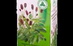 Кровоостанавливающие травы — перечень эффективных трав и рецепты