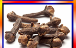 8 веских причин жевать сушеную гвоздику