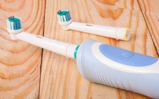 Первая зубная щетка: история, виды, особенности и интересные факты