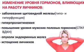 Ановуляция: что это, симптомы, причины, диагностика, лечение, осложнения