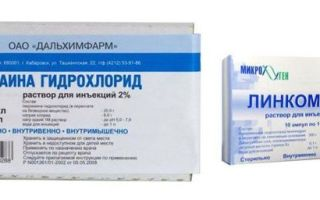 Линкомицин в стоматологии формы, состав, действие, особенности применения