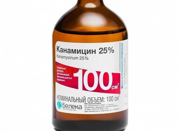 Антибиотики при стоматите у взрослых: лечение после заболеваний полости рта, лечится ли, нужно ли