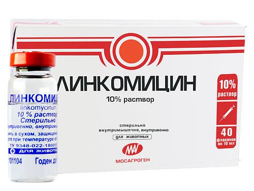 Уколы от пародонтоза: в десна для укрепления, лечение, какие делают при пародонтите, колят Линкомицин насколько эффективны, отзывы, название, Траумель