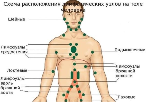 Узелки на коже и под кожей - на лице, на теле, на животе, на руках