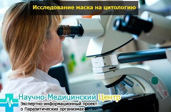 Гинеколог меряет глубину. От чего зависит размер влагалища, как его узнать и какой средний