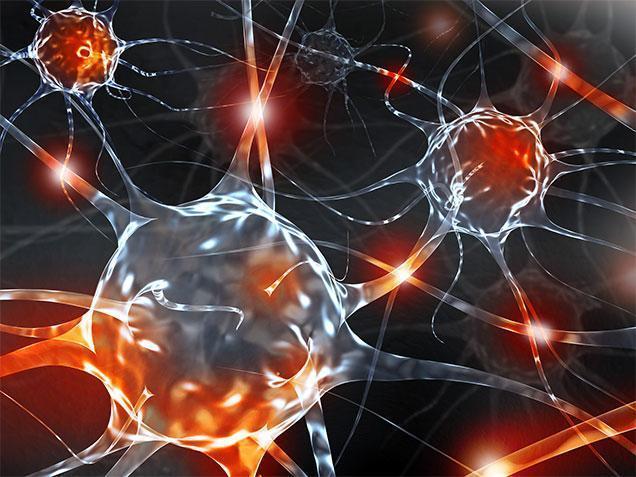 7 симптомов перекрута ножки миоматозного узла (миомы матки)