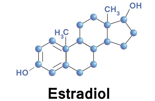 Гормон эстрадиол – норма у женщин: что это за вещество, за что оно отвечает и в чем причины его повышения