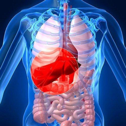 Горечь во рту по утрам - причины и лечение, признаком какого заболевания может быть