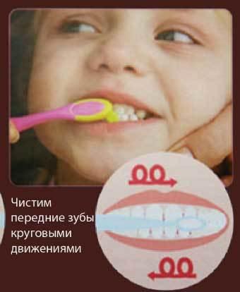 С какого возраста можно чистить зубы ребенку: как правильно начать до года
