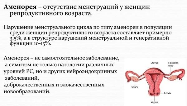 Препараты при нарушении менструального цикла и показания к применению