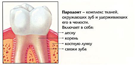 Лечение заболеваний пародонта: хирургические, ортопедические и другие методы комплексной терапии