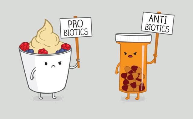 Молочница на фоне приёма антибиотиков: почему появилась и чем лечить