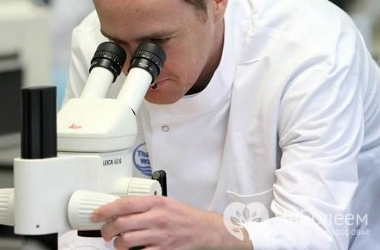 Лептотрикс, лептотрихоз: что это, формы, симптомы, лечение