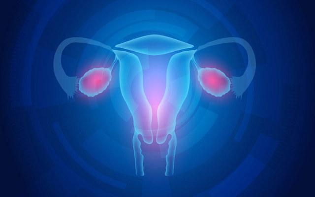 Узи после аборта: что показывает и для чего проводится обследование