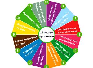 Спринцевание фракцией асд 2 в гинекологии: как разводить и спринцеваться