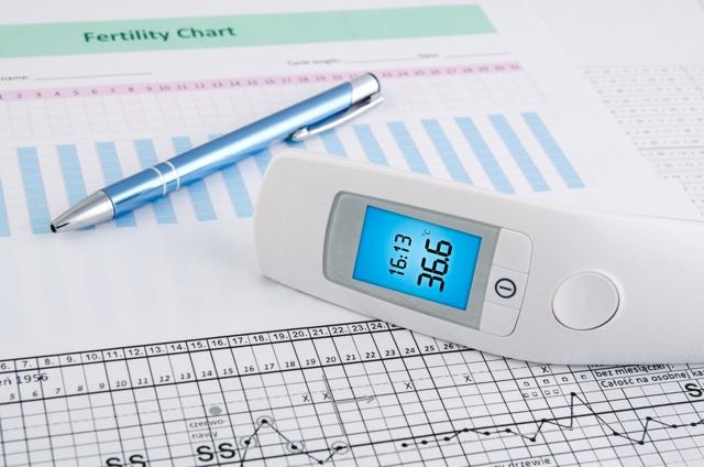 Как померить базальную температуру для определения беременности