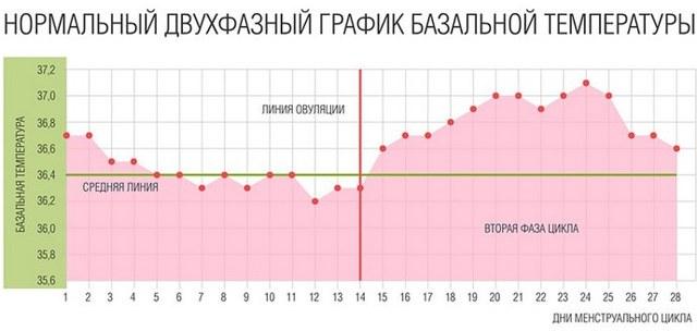 Повышение температуры перед месячными: причины озноба и жара