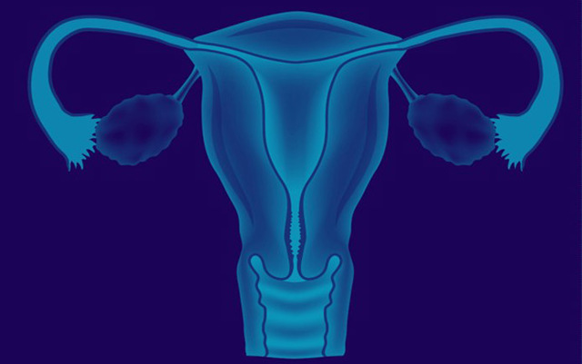 Маленькая матка у женщины, ее причины и последствия