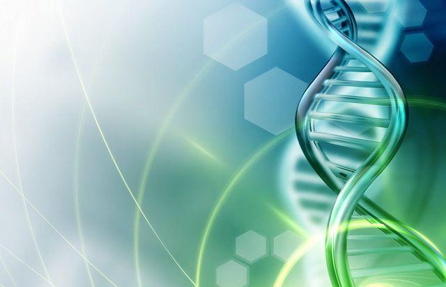 Возможности контурной пластики и биоревитализации полинуклеотидами для интимного омоложения